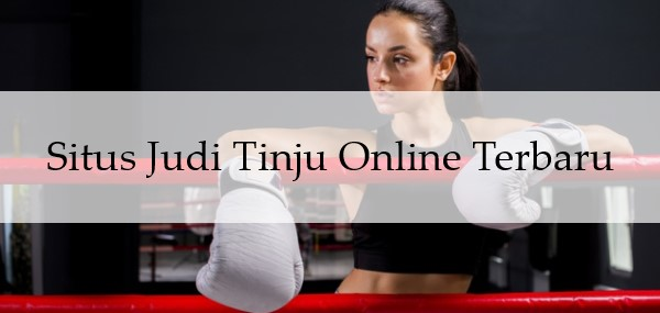 Situs Judi Tinju Online Terbaru